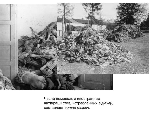 Число немецких и иностранных антифашистов, истреблённых в Дахау, составляет с...