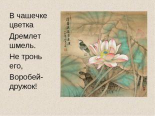В чашечке цветка Дремлет шмель. Не тронь его, Воробей-дружок!