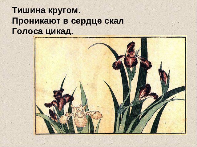 Тишина кругом. Проникают в сердце скал Голоса цикад.