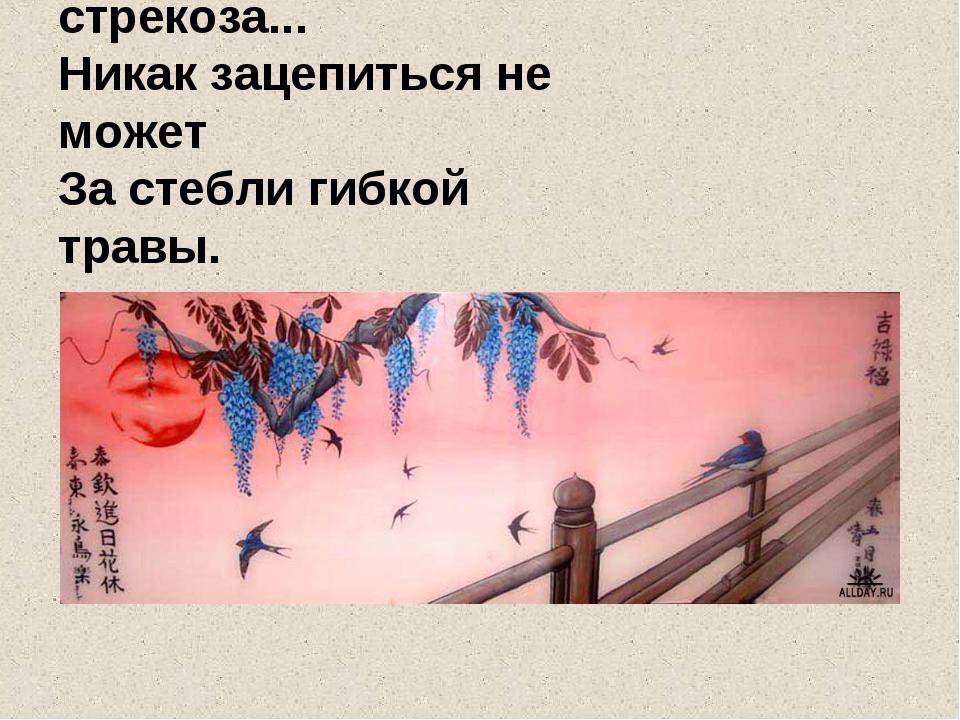 Все кружится стрекоза... Никак зацепиться не может За стебли гибкой травы.