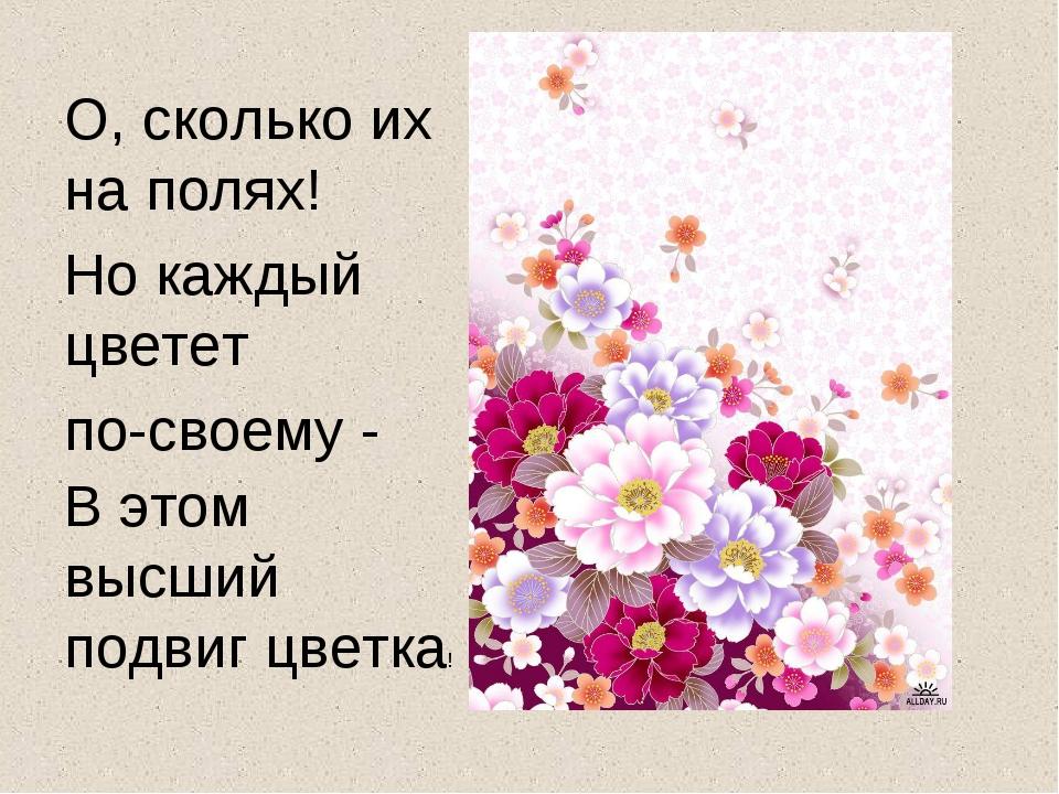 О, сколько их на полях! Но каждый цветет по-своему - В этом высший подвиг цве...