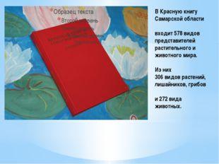 В Красную книгу Самарской области входит 578 видов представителей растительно
