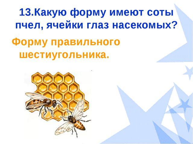13.Какую форму имеют соты пчел, ячейки глаз насекомых? Форму правильного шест...