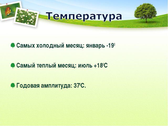 Самых холодный месяц: январь -190 Самый теплый месяц: июль +180С Годовая амп...