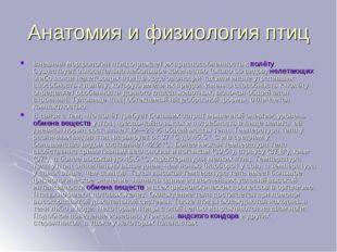 Анатомия и физиология птиц Внешняя морфология птиц отражает их приспособленно