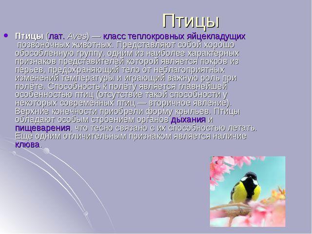 Птицы Птицы(лат.Aves)—класстеплокровныхяйцекладущихпозвоночных животны...