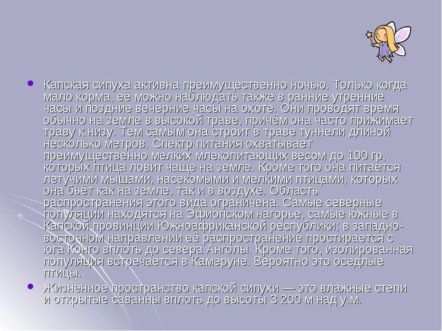 Капская сипуха активна преимущественно ночью. Только когда мало корма, её мож...