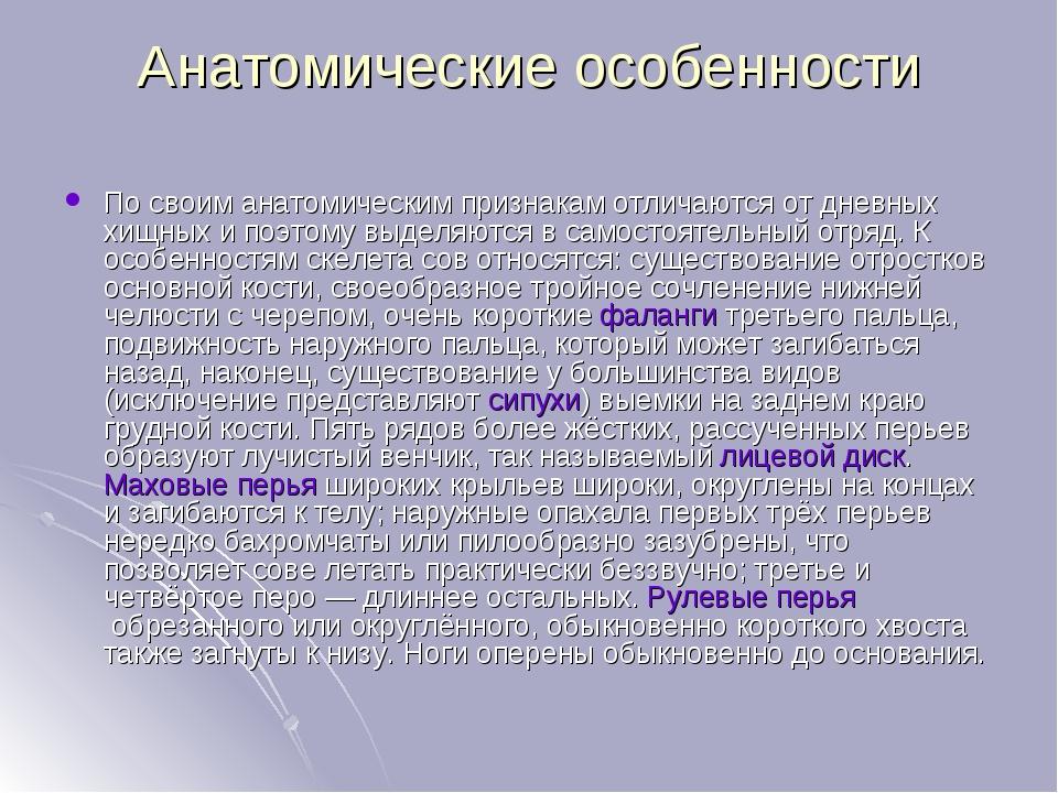 Анатомические особенности По своим анатомическим признакам отличаются от днев...