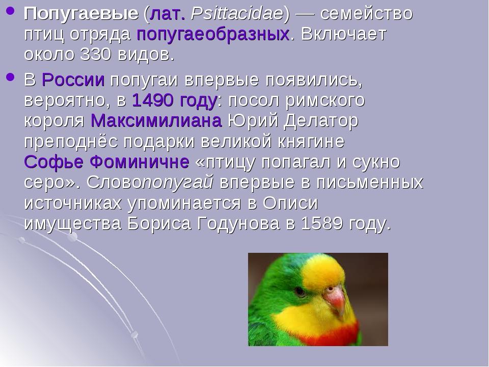 Попугаевые(лат.Psittacidae)— семейство птиц отрядапопугаеобразных. Включа...