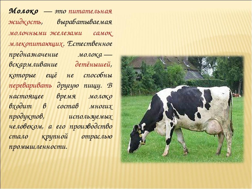 Молоко́— это питательная жидкость, вырабатываемая молочными железами самок м...