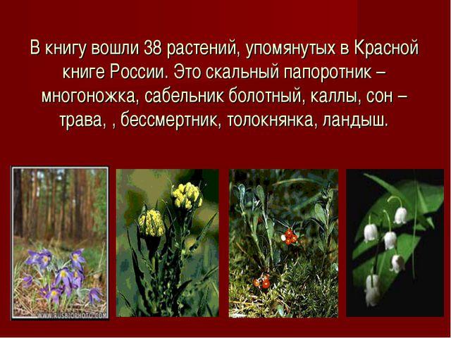 В книгу вошли 38 растений, упомянутых в Красной книге России. Это скальный па...
