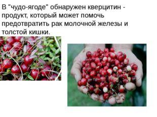 """В """"чудо-ягоде"""" обнаружен кверцитин - продукт, который может помочь предотврат"""