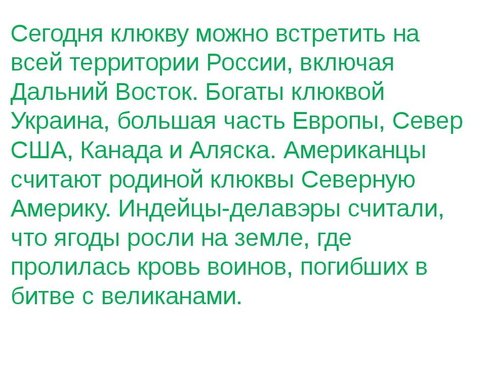 Сегодня клюкву можно встретить на всей территории России, включая Дальний Вос...