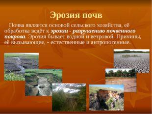 Эрозия почв Почва является основой сельского хозяйства, её обработка ведёт к
