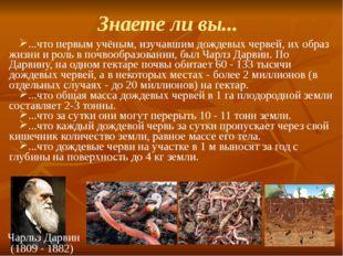 Знаете ли вы... ...что первым учёным, изучавшим дождевых червей, их образ жиз