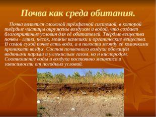 Почва как среда обитания. Почва является сложной трёхфазной системой, в котор