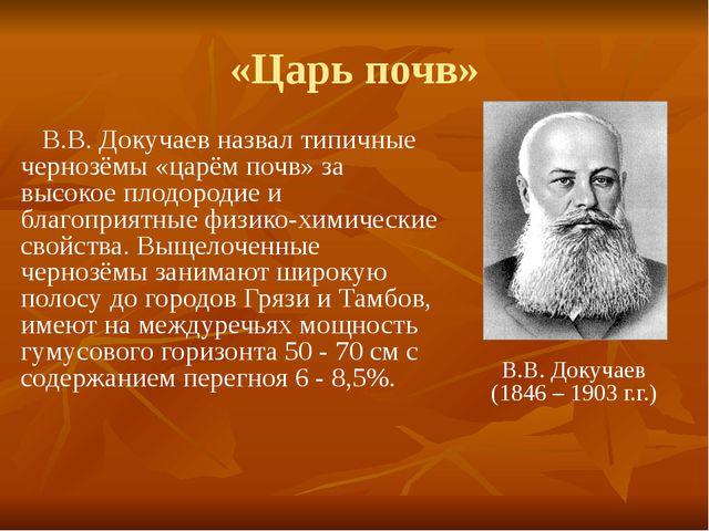 «Царь почв» В.В. Докучаев назвал типичные чернозёмы «царём почв» за высокое п...
