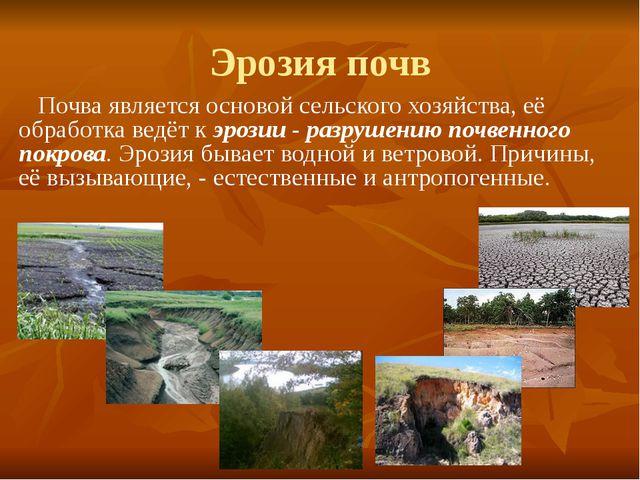 Эрозия почв Почва является основой сельского хозяйства, её обработка ведёт к...