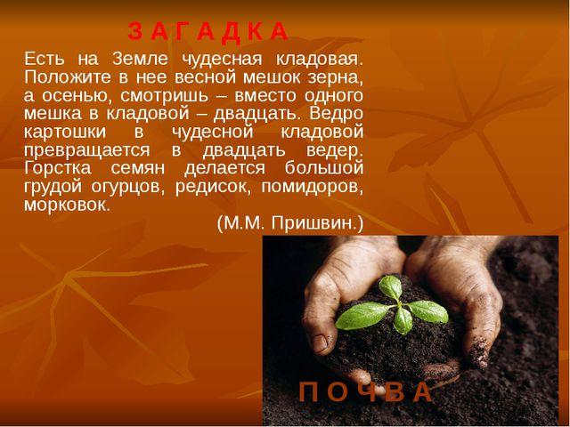 Есть на Земле чудесная кладовая. Положите в нее весной мешок зерна, а осенью,...