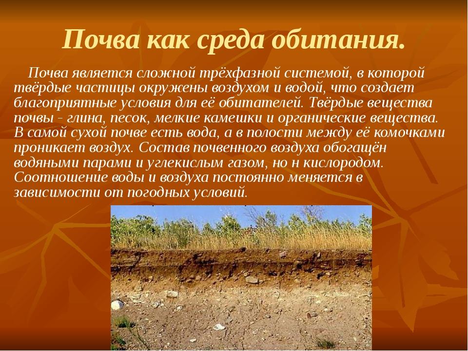 Почва как среда обитания. Почва является сложной трёхфазной системой, в котор...