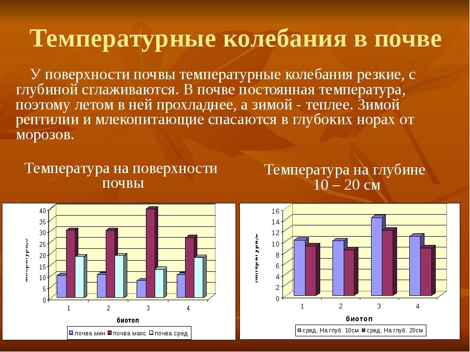 Температурные колебания в почве У поверхности почвы температурные колебания р...