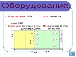 Размер площадки : 9Х18м. Сетка: ширина 1 м. .  длина 9,5 М. Высота сетк