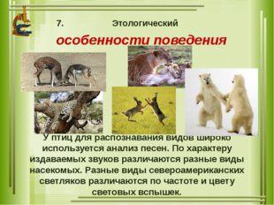 Этологический особенности поведения У птиц для распознавания видов широко исп