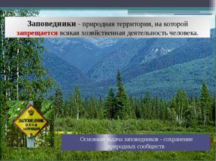 Заповедники - природная территория, на которой запрещается всякая хозяйственн
