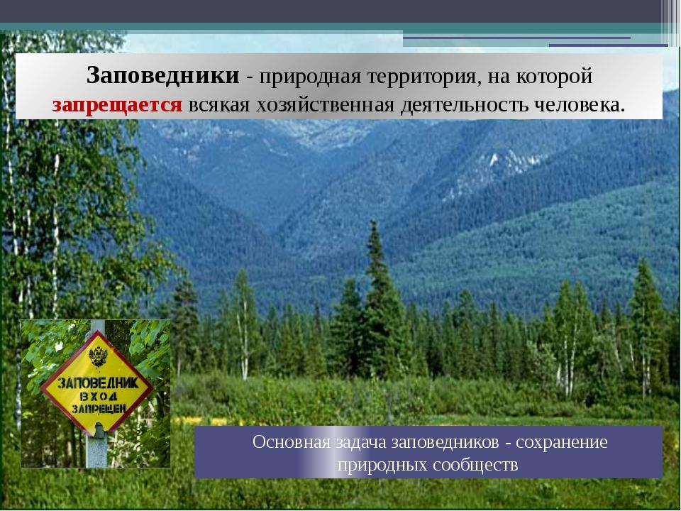 Заповедники - природная территория, на которой запрещается всякая хозяйственн...