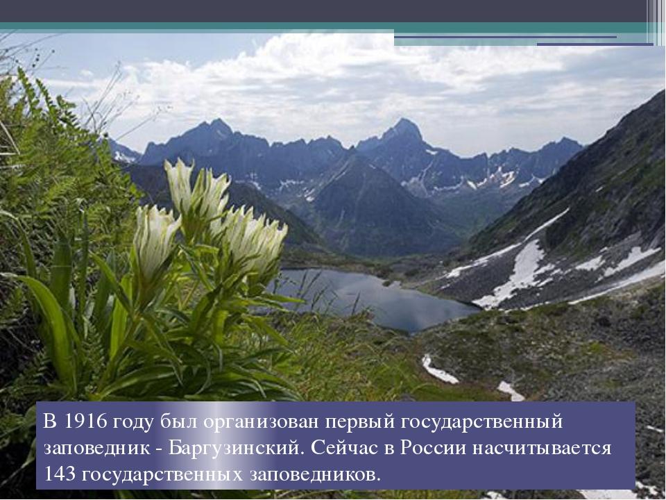 В 1916 году был организован первый государственный заповедник - Баргузинский....
