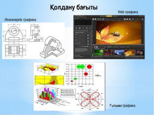 Қолдану бағыты Инженерлік графика Web графика Ғылыми графика