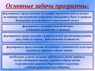 Основные задачи программы: формировать представление об основах экологической