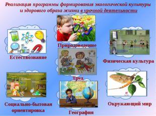 Реализация программы формирования экологической культуры и здорового образа ж