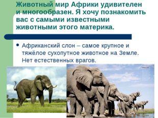 Животный мир Африки удивителен и многообразен. Я хочу познакомить вас с самым