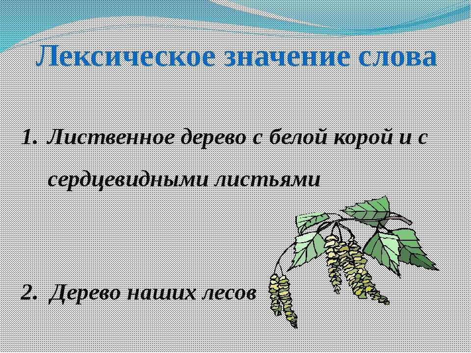 Лексическое значение слова Лиственное дерево с белой корой и с сердцевидными...