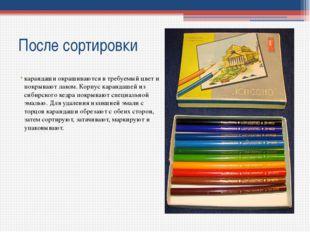 После сортировки карандаши окрашиваются в требуемый цвет и покрывают лаком. К