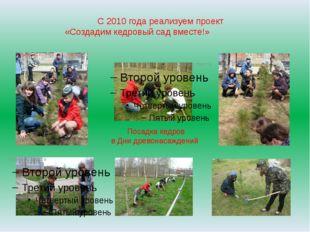 С 2010 года реализуем проект «Создадим кедровый сад вместе!» Посадка кедров в