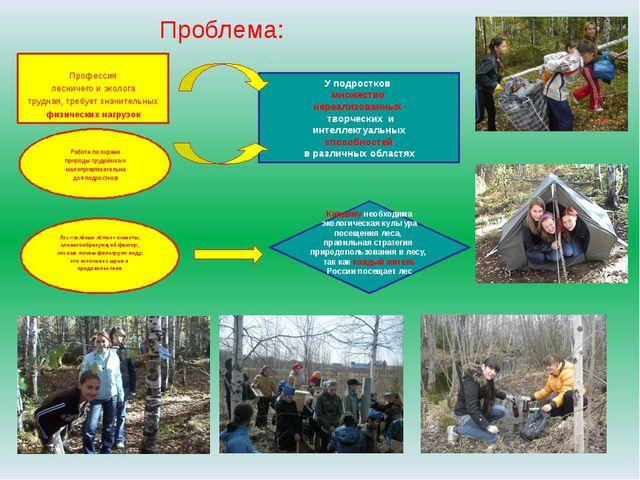 Проблема: Профессия лесничего и эколога трудная, требует значительных физичес...
