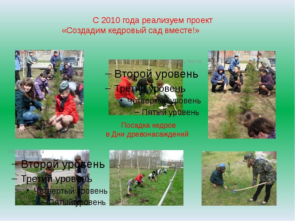 С 2010 года реализуем проект «Создадим кедровый сад вместе!» Посадка кедров в...