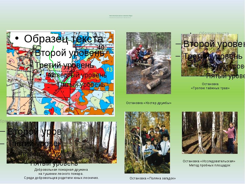 Экологическая тропа школьного лесничества «Радуга» пгт. Пойковский Лемпинско...