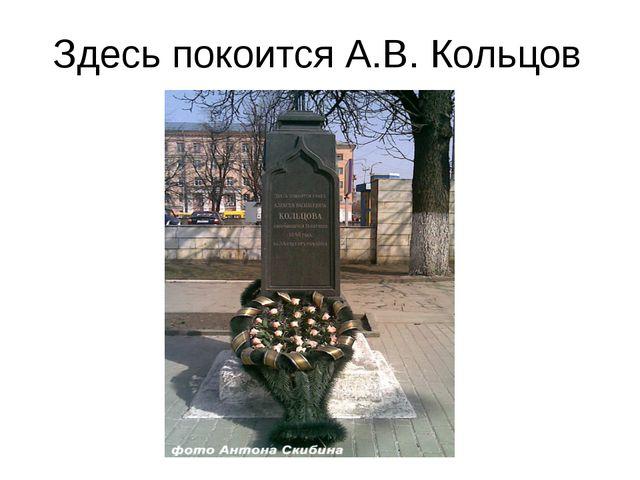 Здесь покоится А.В. Кольцов