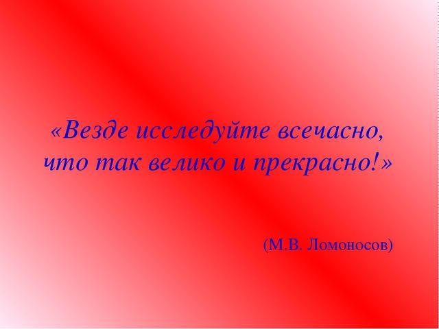«Везде исследуйте всечасно, что так велико и прекрасно!» (М.В. Ломоносов)