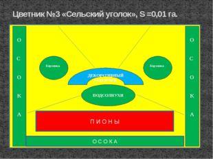 Цветник №3 «Сельский уголок», S =0,01 га. ПОДСОЛНУХИ О С О К А П И О Н Ы ДЕКО