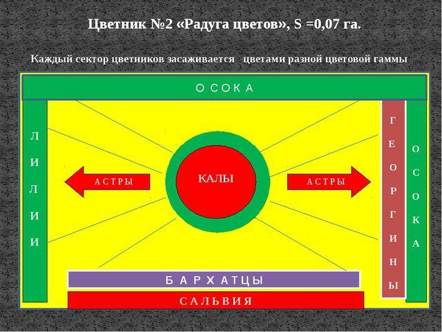 Цветник №2 «Радуга цветов», S =0,07 га. О С О К А Г Е О Р Г И Н Ы С А Л Ь В И...