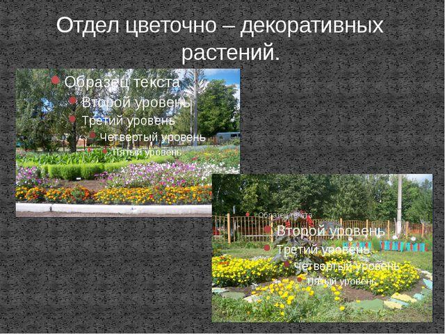 Отдел цветочно – декоративных растений.