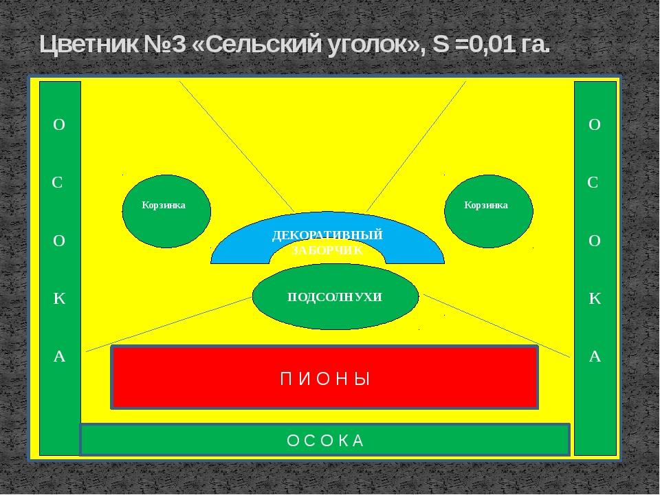 Цветник №3 «Сельский уголок», S =0,01 га. ПОДСОЛНУХИ О С О К А П И О Н Ы ДЕКО...