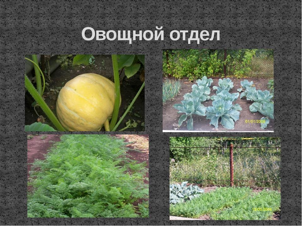 Овощной отдел