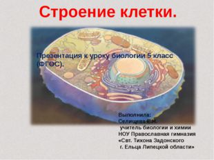 Строение клетки. Выполнила: Селищева Е.Н. учитель биологии и химии НОУ Право