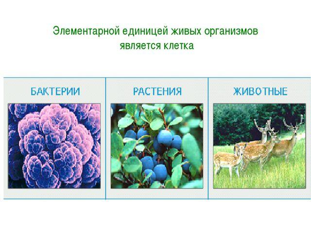 Элементарной единицей живых организмов является клетка