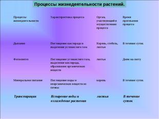 Процессы жизнедеятельности растений. Процессы жизнедеятельностиХарактеристик